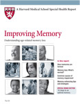 Harvard Report on Memory